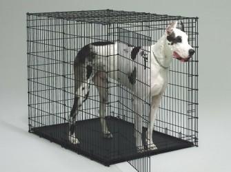 Hondenbench voor dogachtigen 137cm ! nu €179,95