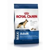 Brok van Hiltjo Royal Canin Maxi Adult 15 kg
