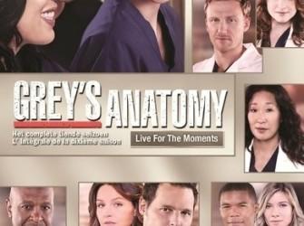 Greys anatomy - Seizoen 10