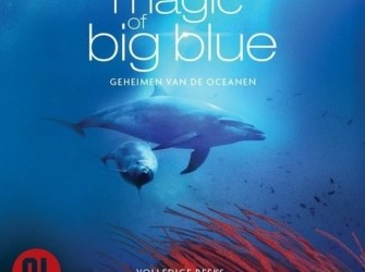 Magic of big blue