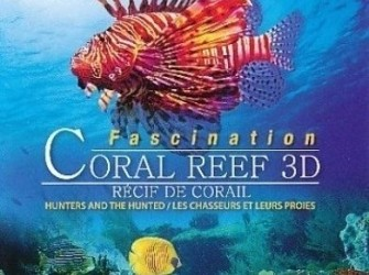 Coral reef - Hunters and the hunted 3D