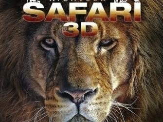 Avontuur safari 3D