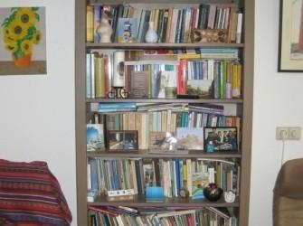 Diverse boeken te leen
