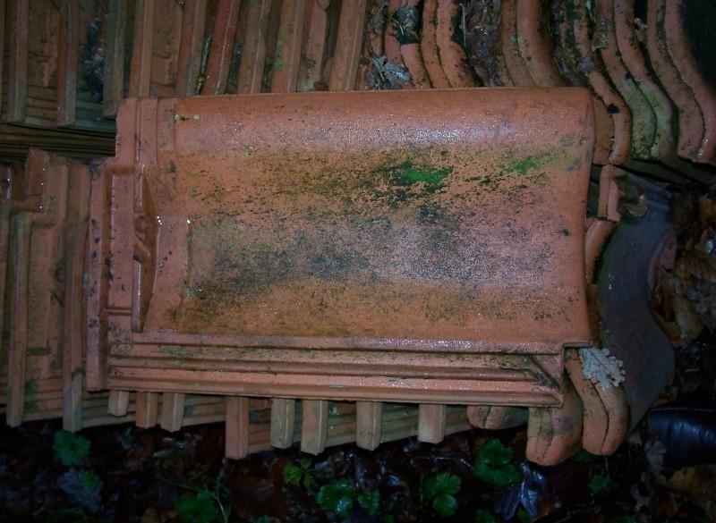 Dakpannen voor schuur of kapschuur