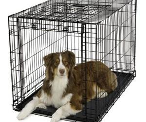 Bench met roldeur topmerk Sale Hondenbench