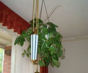 Een glasinlood hanglamp