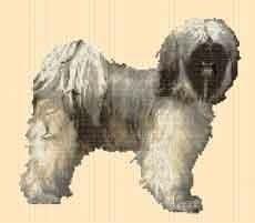 Borduurpakket : Tibetaanse Terrier