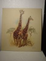 Giraffes tekening (reproduktie) 40 x 43 cm