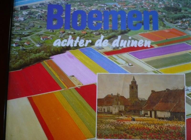 BLOEMEN achter de duinen, H v Amsterdam P vd Voort.