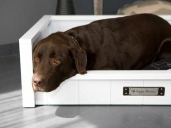 Hondenbank Design wit houten en trendy kussen SALE