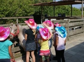 kinderfeestje op de boerderij?
