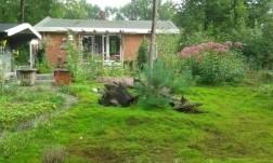 Bungalow midden in de natuur bij Westerbork