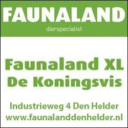 Faunaland Koningsvis