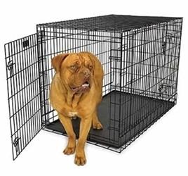 Hondenbench aktie met gratis vetbed gratis bezorgd