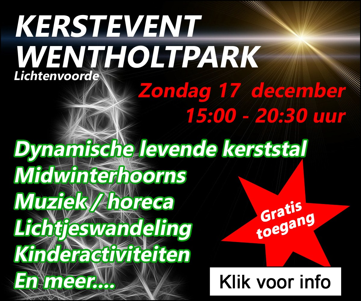 Kerstevent Wentholtpark