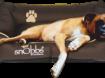 Hondenmand zwaarste kwaliteit Canvas! vanaf €32,95