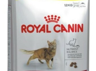 Royal canin fit 32 10+2 kg gratis €44,99 AKTIE!