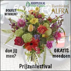 Prijzenfestival Koopplein