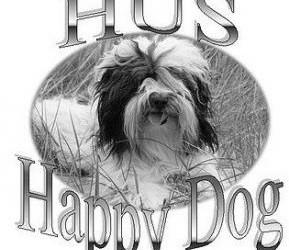hond(en) uitlaten.huisdieren verzorgen.