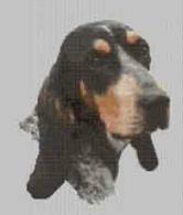 Borduurpakket : Luzerner Laufhund