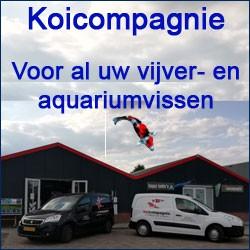 Koicompagnie, specialist in vijver en aquaria