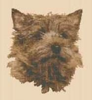 borduurpakket : Cairn Terrier