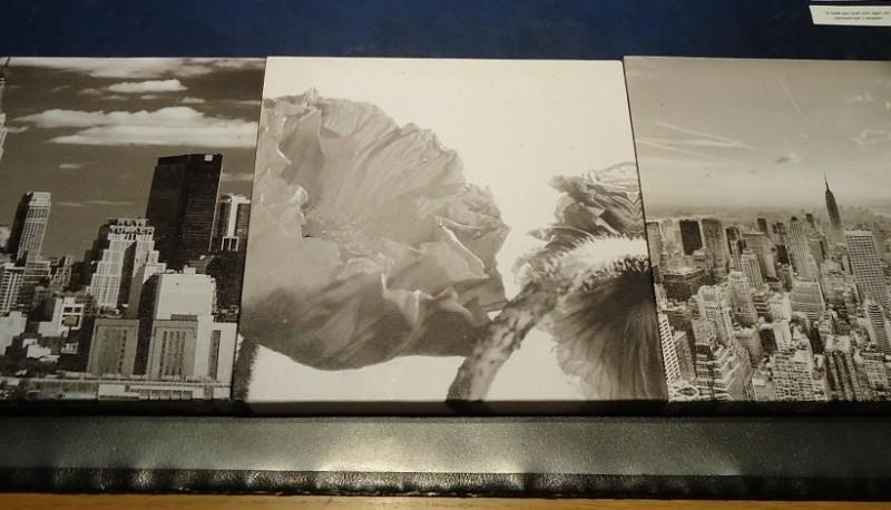 Vier afbeeldingen op canvasdoek (20 x 20 cm en 25 x 25 cm).