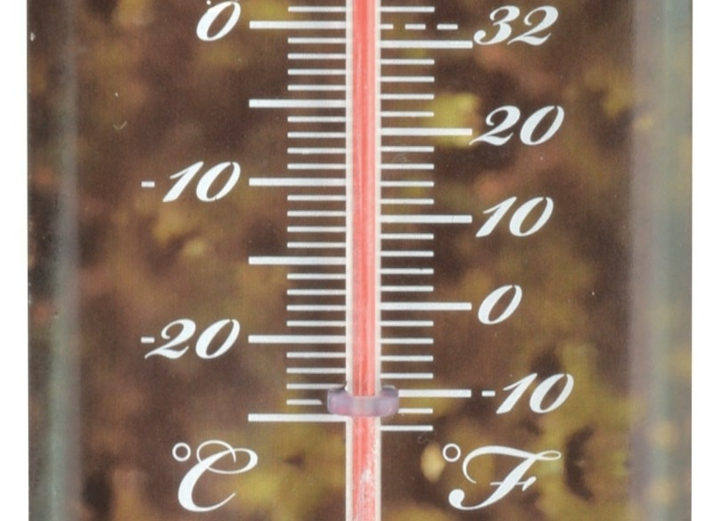 Thermometer Paard