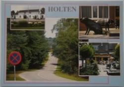 Ansichtkaart - Holten (Hen 4)