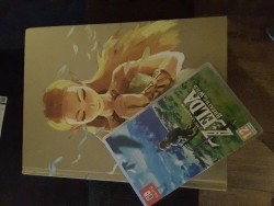 Legend of zelda breath of the wild incl off. Guide