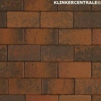 14063 NIEUWE betonklinkers Terborg brons 21x10,5x6cm bkk st…
