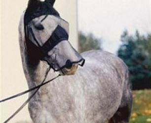 USA Quiet Riding Mask, v. buitenrijden Paard/pony