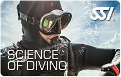 Erkenningsbrevet Try Scuba Diving, SSI brevet Snorkel Diver
