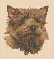 borduurpakket: cairn terrier