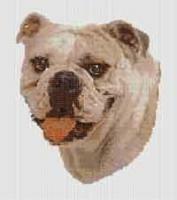 borduurpakket : Bulldog