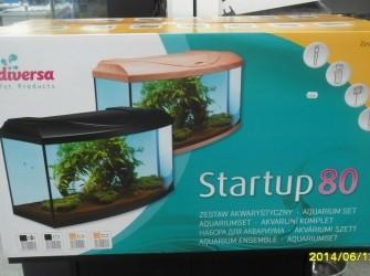 Startup 80 aquarium