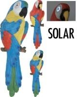 Papegaai met solarogen  Alleen deze week 10% extra korting