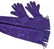 Winterset sjaal met handschoenen-blauw  Alleen deze week 10…