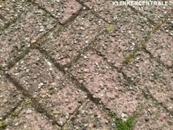 20155 ROOIKORTING 350m2 heiderood betonklinkers straatstene…