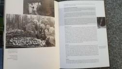 Te Koop : Boek : Het fenomeen Felder