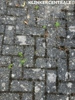 20187 ROOIKORTING 300m2 antraciet betonklinkers straatstene…
