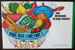 Boekje - Nutricia voor aanstaande jonge moeders