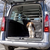 Automaterialen auto accessoires voor honden nu SALE -35%