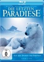 Special Interest – Arktis - Auf den Spuren des Eisbären [Bl…