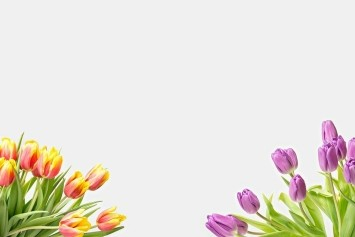 Diverse bloemen in een prachtig boeket