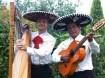 LOS MAYAS! Mexicaanse, Zuid-Amerikaanse & Spaanse muziek.