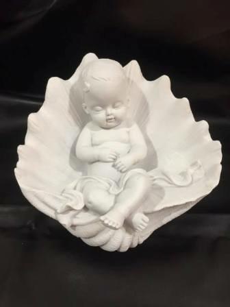 baby in schelp