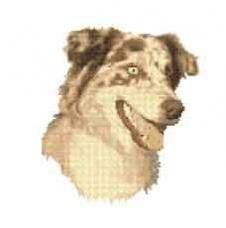 Borduurpakket : Australia Shepherd Dog