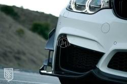 Carbon GT canards F8x M3/M4