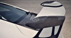 Porsche 911 991.1 GT3 RS Carbon end plats